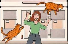 LNP: Larry Cat In Space